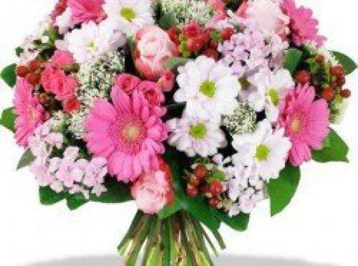 fiori per congratulazioni piante