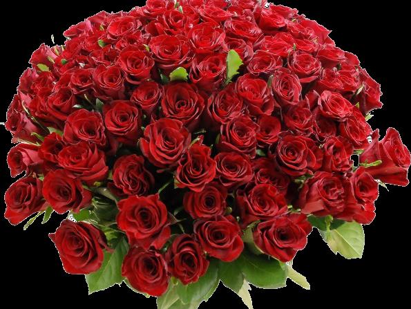 fiori omaggio pensiero natale